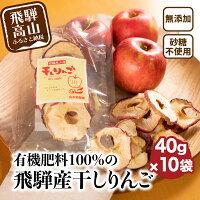 【ふるさと納税】山本果樹園干しりんご40g入り10袋a531