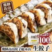 【ふるさと納税】たっぷり高山餃子ファミリーパック(100個入り)<生冷凍餃子・簡易包装>a596