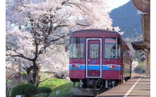 【ふるさと納税】長良川鉄道全線1日乗車券