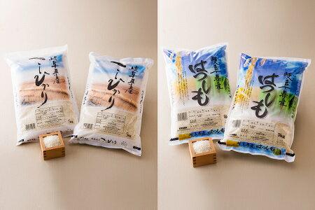 【ふるさと納税】【59E0730】【頒布会】岐阜県 コシヒカリ・ハツシモ 食べ比べコース(全2回)