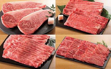 【ふるさと納税】【59E033】飛騨牛食べ比べコース (全4回コース)