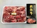【ふるさと納税】 飛騨牛 牛スジ 1kg / たっぷり 1キ...