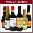【ふるさと納税】岐阜のきき酒師が厳選したワインセット 厳選ワ...