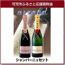 【ふるさと納税】岐阜のきき酒師が厳選したシャンパーニュ モエ...