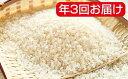 【ふるさと納税】岐阜県産ハツシモ 30kg年3回(10月、2...