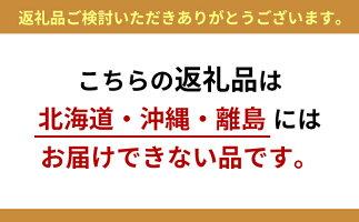 【ふるさと納税】ぎふ清流完熟マンゴー3個セット【果物・フルーツ・マンゴー】お届け:2019年6月初旬〜2019年8月30日
