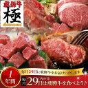 【ふるさと納税】《自分へのご褒美にも》飛騨市推奨特産品飛騨牛 毎月29日(肉の日) 飛騨牛を食べよう! 1年バージョン[O0002]