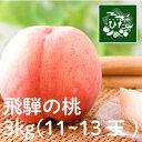 【ふるさと納税】桃 3kg (11〜13玉)[B0182]