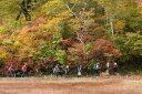 【ふるさと納税】【5名〜9名グループ用】大型タクシーで秘境を自然案内人と歩く 飛騨 ハイキング ガイドツアー 天生高層湿原とブナ原生林【K0081】