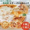 【ふるさと納税】<牧成舎>自家製チーズたっぷりピザ4枚セット(直径24cm) ピ