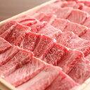 【ふるさと納税】飛騨市推奨特産品飛騨牛 希少部位入り福袋 焼肉セット 総重量1200g 1.2kg 1kg 以上 メガ盛り 和牛 肉 お中元[F0008]