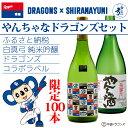 【ふるさと納税】DRAGONS×白真弓 コラボ オリジナルデザインラベル やんちゃなドラゴンズセット
