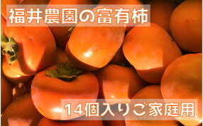 【ふるさと納税】[柿の王様]福井農園の富有柿ご家庭用M・Lサイズ(14個)[0149]