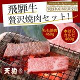 【ふるさと納税】【期間限定】飛騨牛焼肉セットもも焼肉460g、本ばらカルビ460g