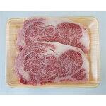 【ふるさと納税】A5等級飛騨牛/サーロインステーキ用約600g(1枚約300g×2枚)【1100896】