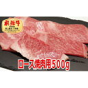 【ふるさと納税】【最高級A5等級】飛騨牛ロース焼肉用500g 【お肉・牛肉・ロース・お肉・牛肉・焼肉・バーベキュー】