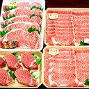 【ふるさと納税】【特選】飛騨牛 A5等級スペシャルセット 【...
