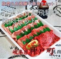 飛騨牛焼肉セット01