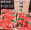 【ふるさと納税】飛騨牛サーロインステーキとロース焼肉セット