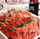 焼肉セット01