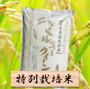 【ふるさと納税】特別栽培米 ミルキークイーン 精米10kg(分搗き可)または 玄米(11Kg) 29年産