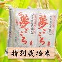 【ふるさと納税】特別栽培米 夢ごこち 精米20kg(分搗き可...