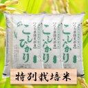 【ふるさと納税】特別栽培米 コシヒカリ 精米30kg(分搗き可)または 玄米(33Kg) 29年産