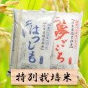 【ふるさと納税】特別栽培米 20kg ハツシモ/夢ごこち 3...