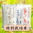 【ふるさと納税】特別栽培米 30kg ミルキー/ハツシモ/夢...