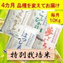 【ふるさと納税】【定期便】特別栽培米 10kg×4カ月 4品...