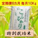 【ふるさと納税】【定期便】特別栽培米 10kg×6カ月 コシ...