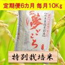 【ふるさと納税】【定期便】特別栽培米 10kg×6カ月 夢ご...