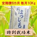 【ふるさと納税】【定期便】特別栽培米 10kg×6カ月 ハツ...