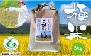 """【ふるさと納税】岐阜鰻たむろが送るコシヒカリ""""極米""""5Kg"""