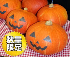 【ふるさと納税】限定30!富加町のかぼちゃ『食べるハロウィンかぼちゃ』