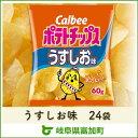 【ふるさと納税】カルビー ポテトチップス うすしお味 24袋...