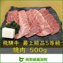 【ふるさと納税】飛騨牛焼肉 もも・ばら500g 最上級品5等...