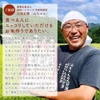 【ふるさと納税】山ちゃんの『甘酒』詳細