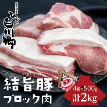 【ふるさと納税】飛騨牛ブロック[塊]霜降り肉赤身肉ブロック肉セット[S046]