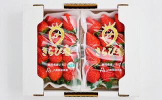 【ふるさと納税】キラっと輝くいちご『きらぴ香』10箱20パック 【果物類・いちご・苺・イチゴ】 お届け:2020年2月上旬〜4月中旬