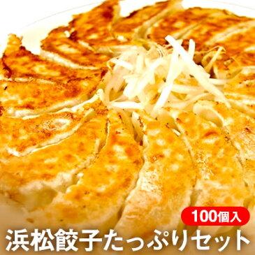 【ふるさと納税】ちくや浜松餃子たっぷりセット(無添加ぎょうざ100個) 【加工品】
