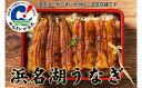 【ふるさと納税】浜名湖うなぎ(SF03)長蒲焼+刻み+肝焼き2食【うなぎ・鰻】