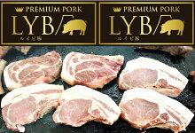 【ふるさと納税】ルイビ豚プレミアムステーキセット