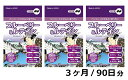 【ふるさと納税】ブルーベリー&ルテイン(1袋60粒)3か月パ...