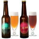 Usamiビール2種×2本(4本セット)【ふるさと納税】