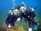 【ふるさと納税】日帰りでOK!伊東・城ヶ崎の海で1日体験ダイビング(1名様)