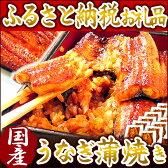 【ふるさと納税】楽天ランキング1位★静岡県 うなぎのたなか うなぎ蒲焼12食 国産うなぎ蒲焼き