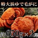 【ふるさと納税】c20-022 特大浜ゆで毛がに2尾 KHB...