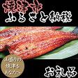 【ふるさと納税】001-300 国産炭火焼 鰻蒲焼