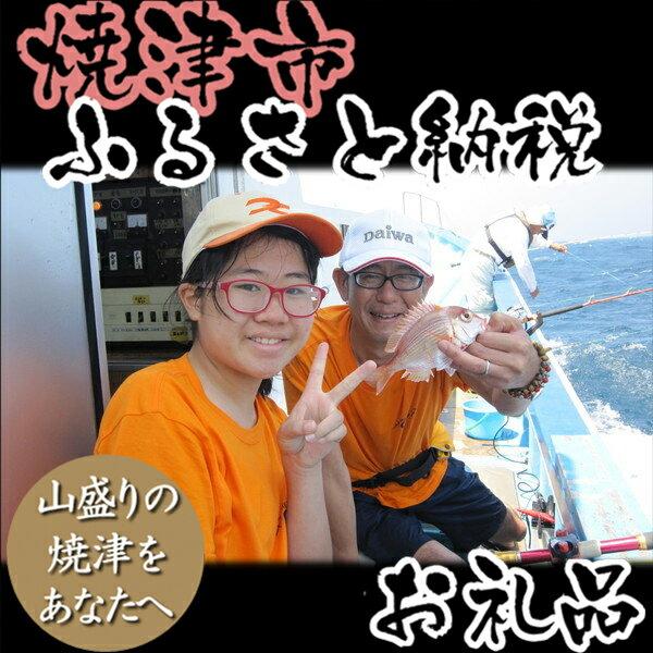 【ふるさと納税】003-046 遊漁船 一日無料ご優待券:静岡県焼津市